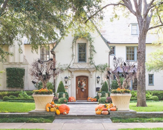 Fun Halloween Decor Inspiration + Shop!