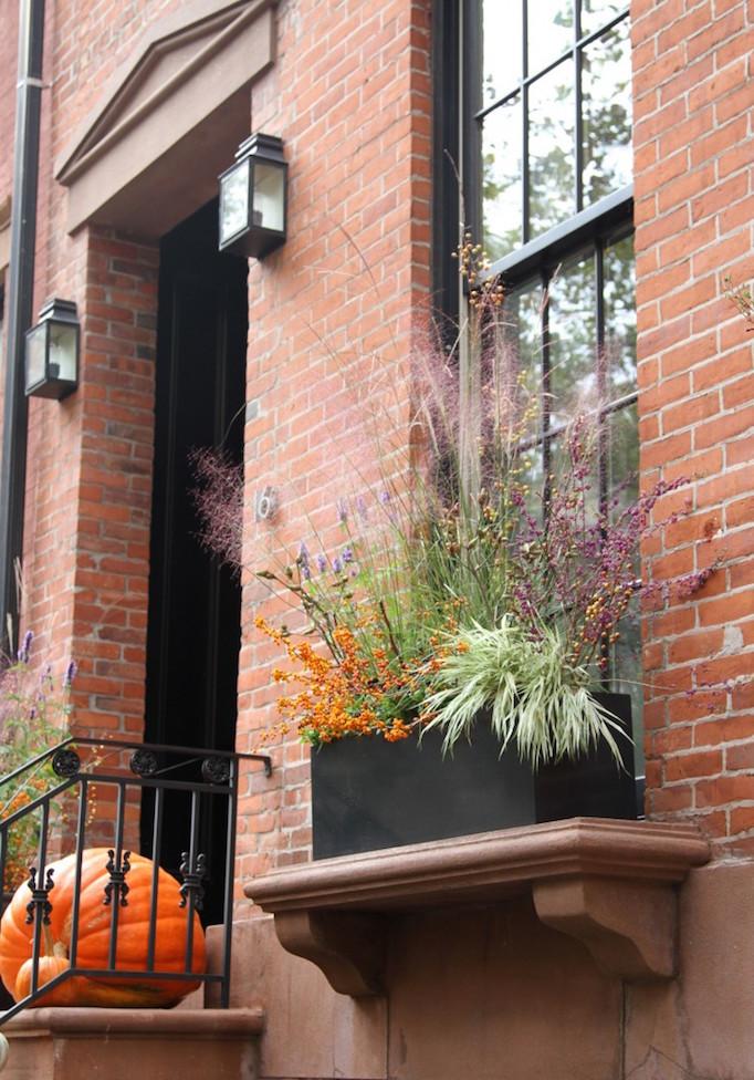 halloween-planter-1-erinboyle-gardenista_0